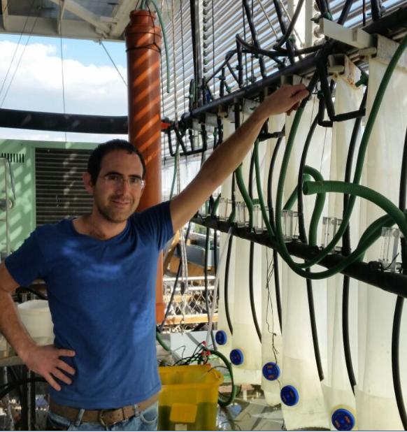 Meiron Zollmann granted a Manna Center for Food Security Fellowship for 2018-2019